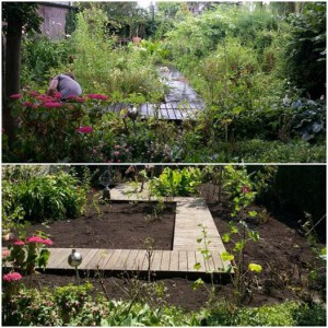 Tuin opknappen in gouda schoffelstudent for Tuin opknappen