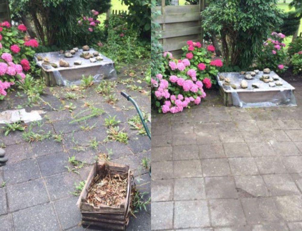 Klimop verwijderen for Tegels bodegraven
