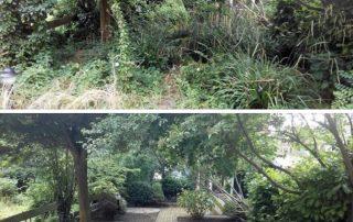 Tuinonderhoud verwilderde tuin