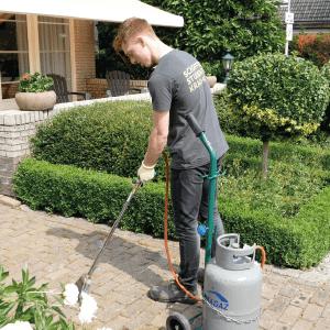 Tips voor voorjaarsonderhoud tuin
