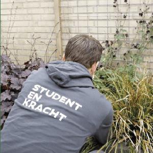 Tuinkalender onderhoud