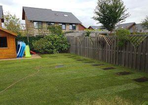 grasveld aanleggen