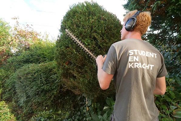 Hovenier voert tuinonderhoud uit