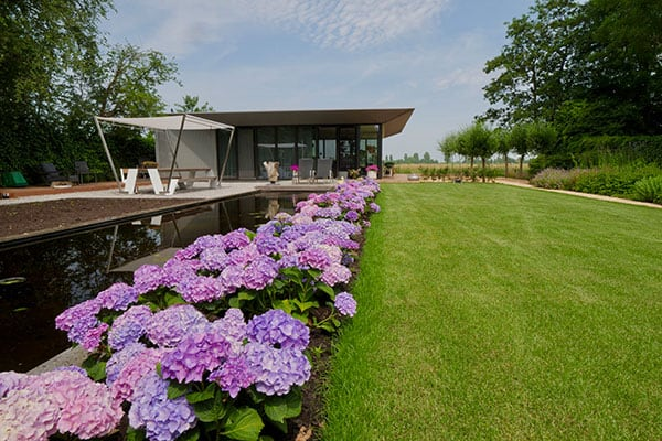 Beplanting in tuin Waddinxveen