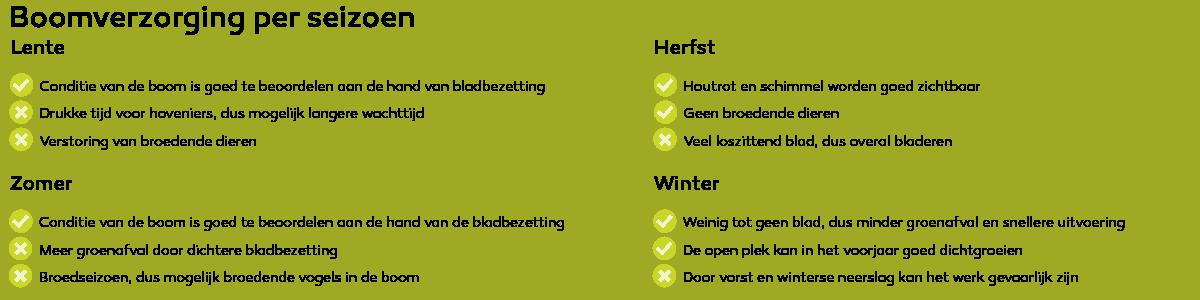 In welk seizoen kan je boomverzorging doen?