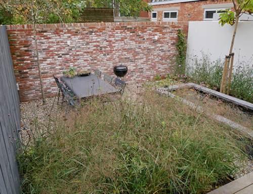 Een onderhoudsvrije tuin: bestaat dat? Of een onderhoudsvriendelijke tuin?